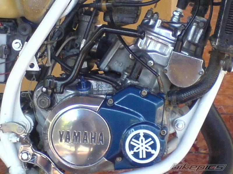 Banshee Motor Diagramtor Wiring 2480402 Orig Yamaha It490
